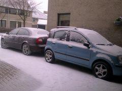 panda en octavia in sneeuw.jpg